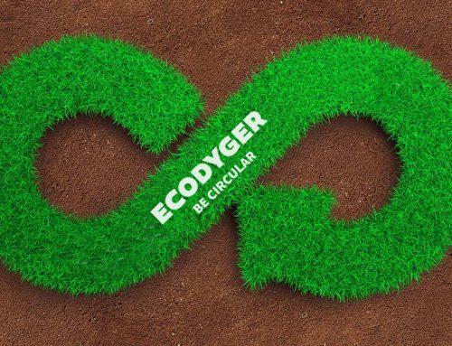 """Rifiuti organici: trattarli alla fonte per essere veramente """"circular"""