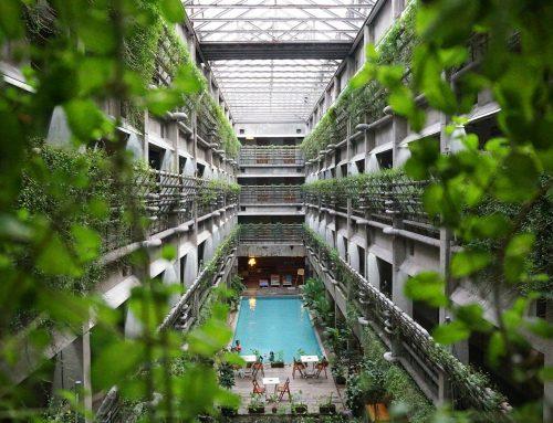 Turisti green in aumento: le strutture ricettive sono pronte?