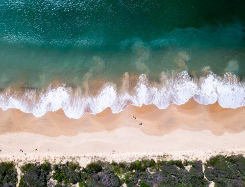 Rispetto per gli oceani: la strada è lunga, ma la direzione è giusta